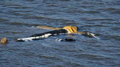 Drijvend lichaam in Rijn blijkt vogelverschrikker