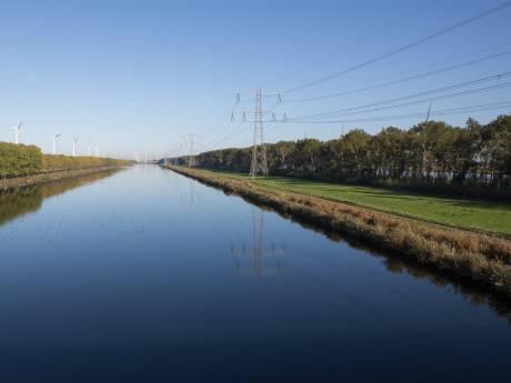 Kaalslag bij Rilland: 2000 populieren gaan tegen de vlakte
