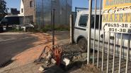 Automobilist verliest voor 15 dagen rijbewijs na knal tegen auto, omheining en distributiekast in Izegem
