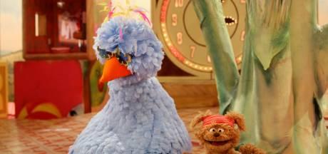 Pino en Tommie zien Sesamstraat voor volwassenen wel zitten