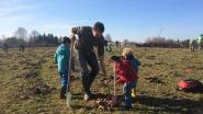 Natuurpunt Oost Brabant plant 7.000 bomen én totem