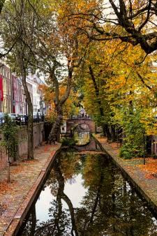 Oproep: Stuur je mooiste herfstfoto's! 🍂🍁