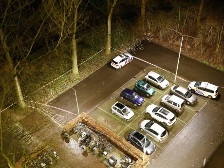 Flatbewoner hoort kermende man na steekpartij in Zwolle: 'Help, help, help'