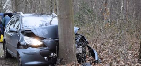 Auto loopt veel schade op door botsing tegen boom in Wehl