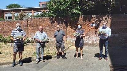 Beweging.net schenkt vetplantjes aan personeel van Najaarszon