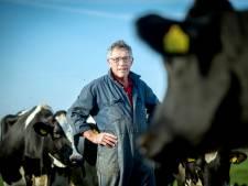 Groene energie in Maas en Waal: niet lullen maar doen