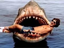 Sinds Spielbergs kaskraker Jaws zijn haaienfilms onuitroeibaar
