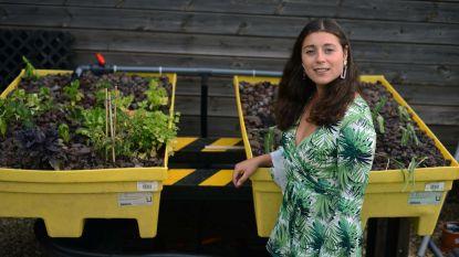 """Leuvense onderneemster bouwt duurzaam landbouwsysteem in haar tuin: """"Dit maakt de productie van groenten en vissen mogelijk zonder waterverspilling"""""""