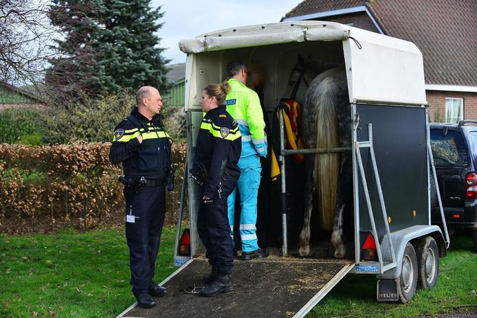 Ruiter en paard botsen met auto in Someren