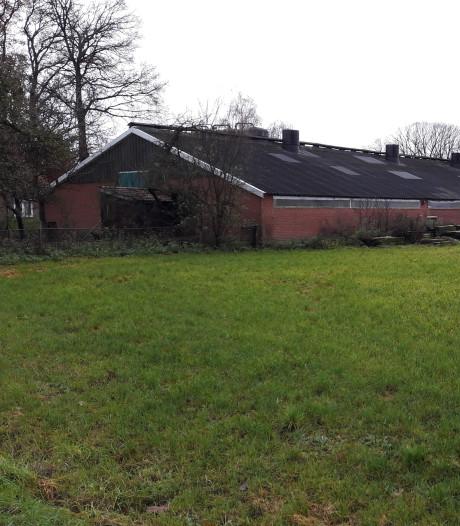 Omwonenden omstreden boerderij in Dinkelland durven niet te spreken in raad vanwege bedreiging