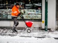 IN BEELD: Zo beleeft Brugge de eerste sneeuw