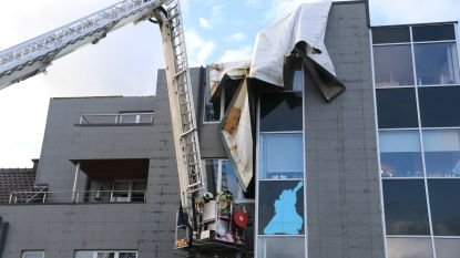 Carnavalszondag wordt stormzondag: omgewaaide bomen en losgerukte daken bezorgen hulpdiensten werk