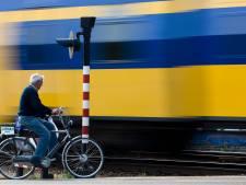 Hele middag geen treinen tussen Rhenen en Driebergen-Zeist door seinstoring
