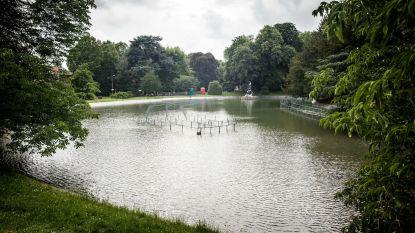 Zelfs na bakken regen is grondwaterpeil op sommige plaatsen in Limburg en Vlaams-Brabant historisch laag
