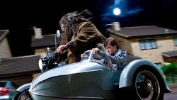 Kinepolis organiseert een Harry Potter-marathon van 24 uur