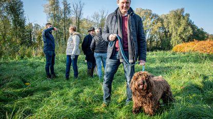 Ingelmunster krijgt hondenloopweide