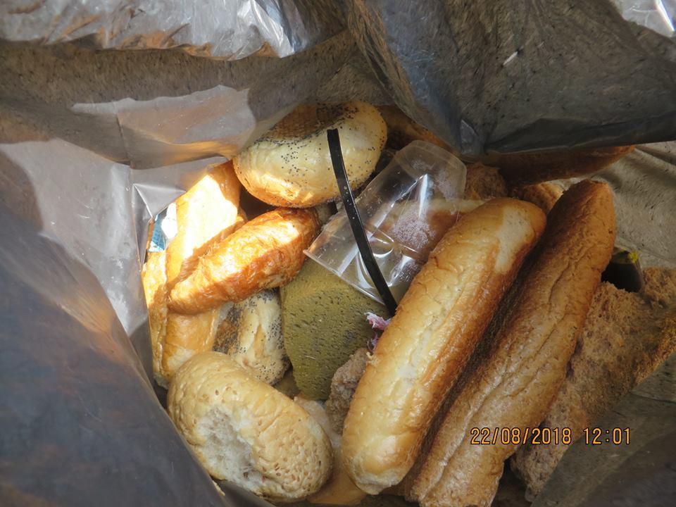 Sponzen en brood gevonden in Bergeijk.
