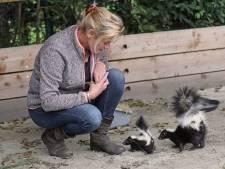 Dit dierenpark heeft een plek veroverd in de top 10 leukste uitjes van Zuid-Holland