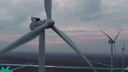 Investeren in wind? Daar wint de natuur én je portefeuille bij!