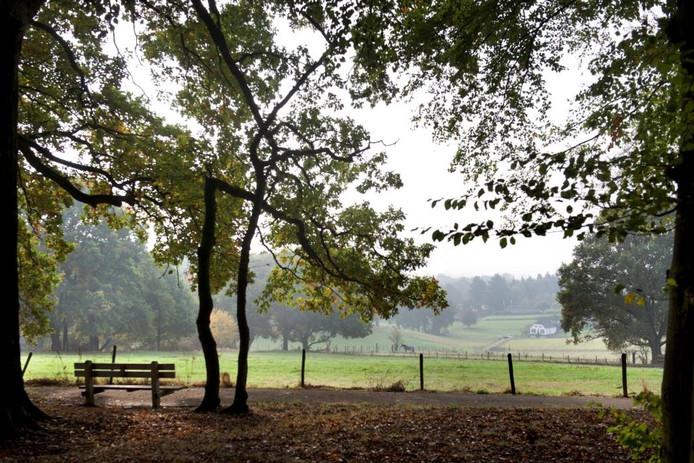 Park Klarenbeek in Arnhem. Hotspot?