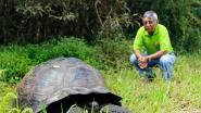 Reuzenschildpad gevonden op Galapagos waarvan men dacht dat ze was uitgestorven