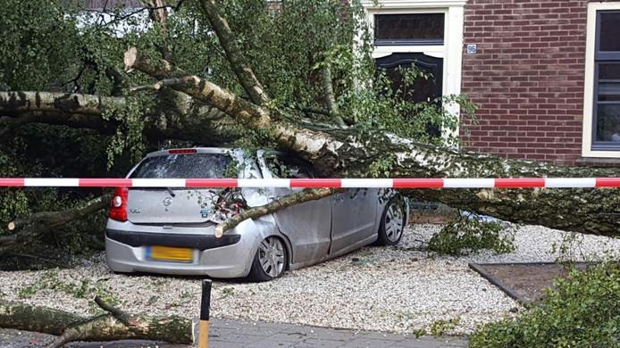 De boom kwam op een auto terecht