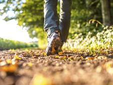 Subsidie voor wandelen met diabetes