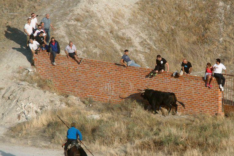Het incident vond plaats in Cuéllar, op zo'n 155 kilometer ten noorden van Madrid. Beeld van het stierenrennen vandaag in Cuéllar.