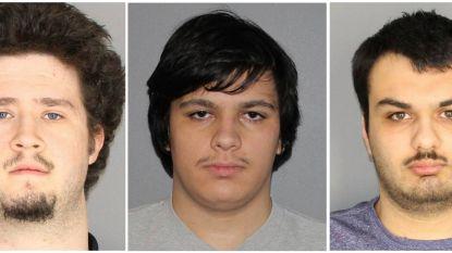 Aanslag op Amerikaans gehucht Islamberg verijdeld, jong viertal in de cel