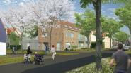 Ninove-Welzijn stelt projecten Berkenhof en Pollarewijk open voor '100 jaar sociaal wonen'