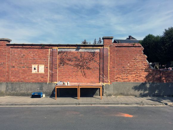 De muurschildering van Sarah De Vos brengt kleur in het straatbeeld.