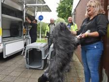 Dieren uit Terneuzense asiel op transport naar Axel
