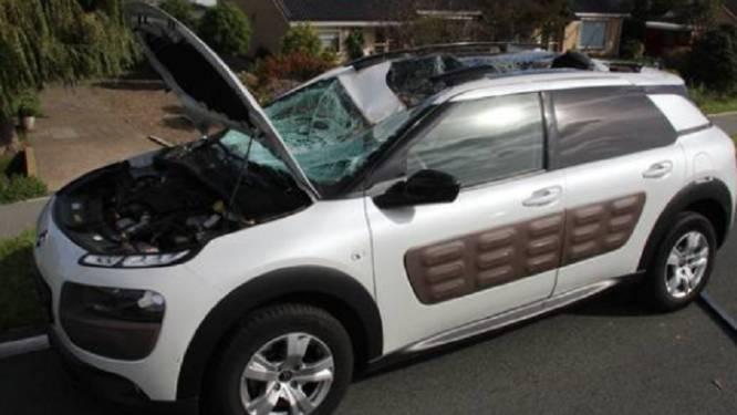 Onwaarschijnlijk: boomstam valt van truck op auto, man stapt vrijwel ongedeerd uit wrak