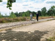 Oss blaast samenwerking met Uden, Landerd en Bernheze op de Maashorst op laatste moment af