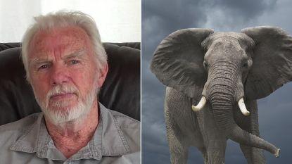 """5000 olifanten en 60 leeuwen gedood, maar jager zegt """"geen gram spijt"""" te hebben"""