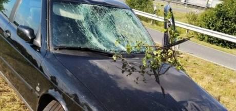 Achtervolging eindigt in crash bij Bad Bentheim