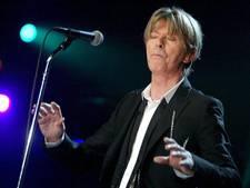 Advocaten: Geheime kinderen Bowie, meld je voor erfenis