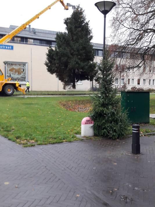 De den wordt naar zijn nieuwe plek bij het gemeentehuis gebracht.
