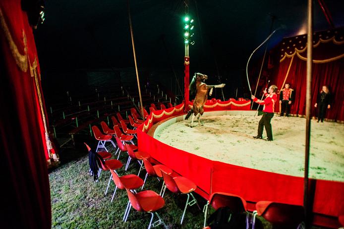 De tent van Circus Barani
