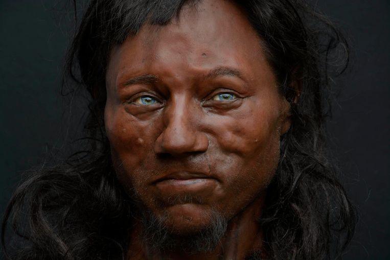 Cheddar Man, de oervader van de Britten, zoals gereconstrueerd door de broers Adrie en Alfons Kennis. Beeld Kennis&Kennis