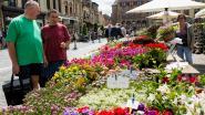 Jubileumeditie Bloemenmarkt afgelast door coronacrisis