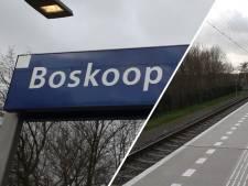 Waarom Boskoop Snijdelwijk bij beste stations van het land hoort: 'Je kan de trein hier een keertje missen'