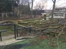 Stormschade sportpark Loil