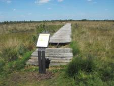 Geen geld voor herstel vlonderpad in Haaksbergerveen