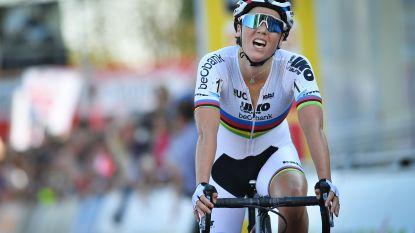 KOERS KORT 06/10. Cant volgt zichzelf op in Meulebeke - Teuns derde na winnende ploegmaat in Italië