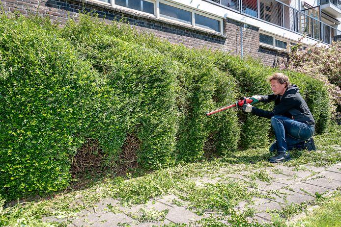 Wildsnoeier Olivier Scheffer snoeit het woord 'mama' in een struik onderaan de Suze Groenewegflat op de hoek van Heemraadssingel en de Beukelsdijk. Het is 10 mei niet voor niks Moederdag.