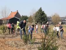 Dordrecht zoekt locaties voor drie Tiny Forests