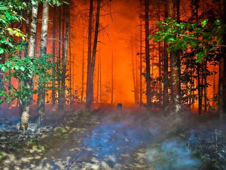 Bosbrand in buitengebied van Valkenswaard, uitgebrand koolstoffilter op pad
