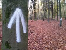 Mysterieuze pijlenroute in Doorwerth: 'Heeft iemand de verfspuiters gezien?'