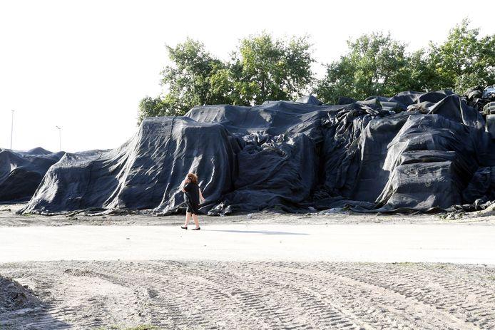 Burgemeester Marina Starmans overziet eerder dit jaar het bedrijfsterrein van Tuf Recycling in Dongen waar nog enkele bergen kunstgrasmatten resten. Er wordt nog altijd hard gewerkt aan de sanering van het terrein dat door eigenaar Dongen Pallets verkocht is aan buurman Ecco.